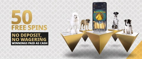 casino 50 free spins new customer offer